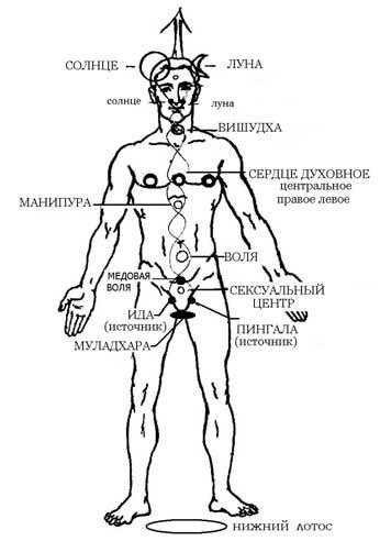 kakoy-instrument-sootvetstvuet-seksualnomu-tsentru
